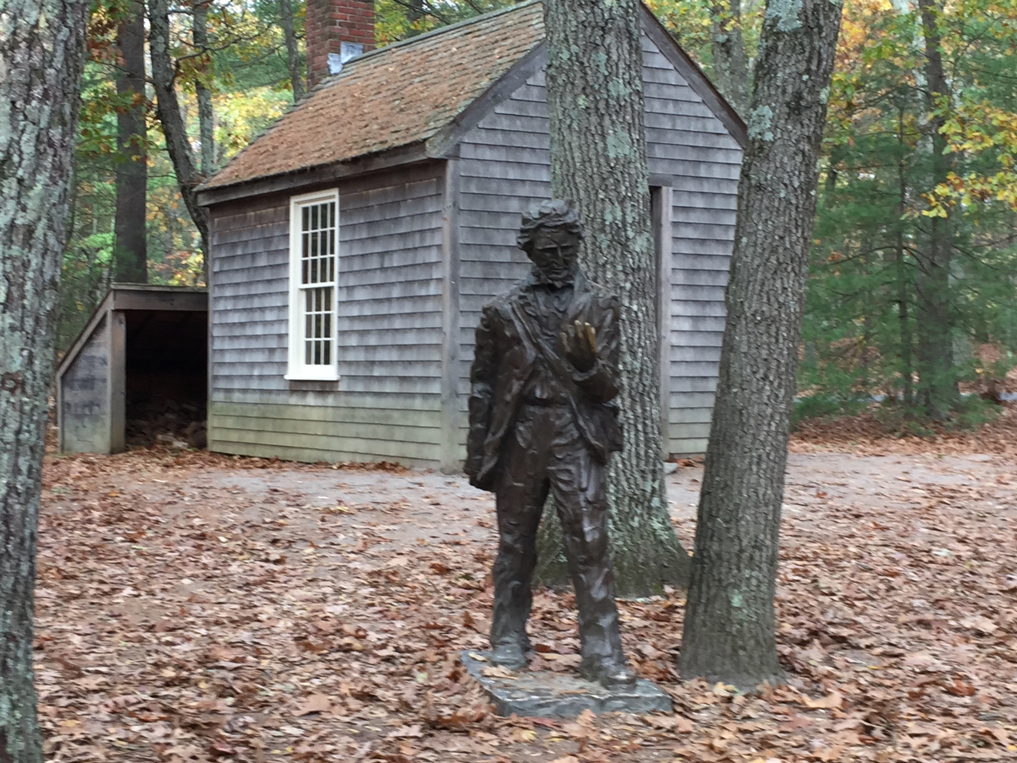 A Walk through Walden Woods in search of Thoreau's Cabin.